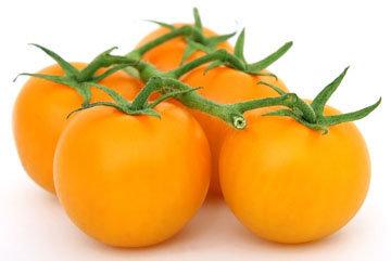 Оранжевые помидоры лучше защищают от рака