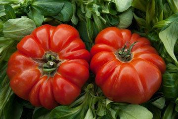 План питания для томатной диеты 2
