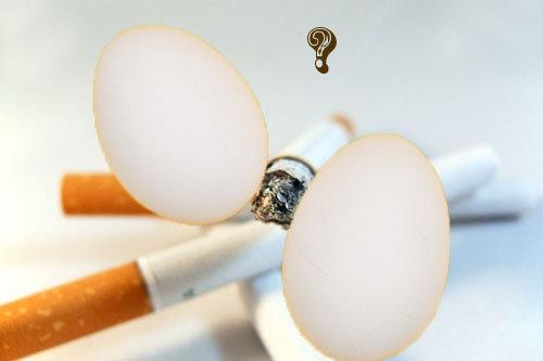 Вред курения = вред яиц