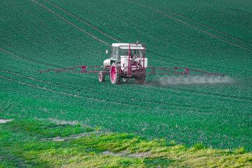 Гербициды, инсектициды и фунгициды вносятся тоннами в поля