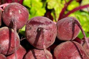 Питательные вещества и ингредиенты на 100 г