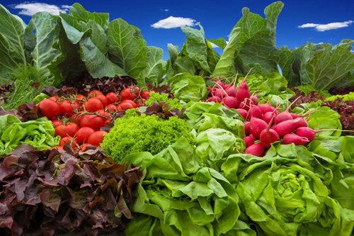 Овощи и фрукты в питании