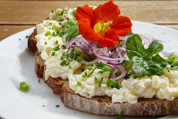 Паста для бутербродов на основе семян подсолнечника